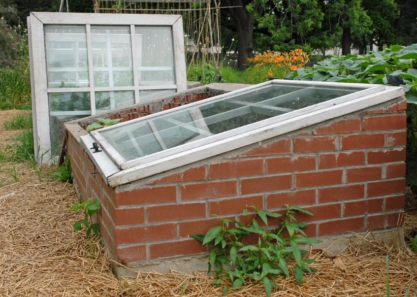 Growing An Edible Winter Garden Slideshow