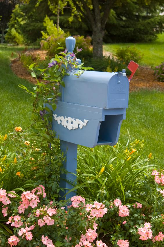 171043-565x850-Blue-mailbox-vines-IS Island Bed Garden Design Small on herb garden design, island landscape design, garden perennial flower bed design,
