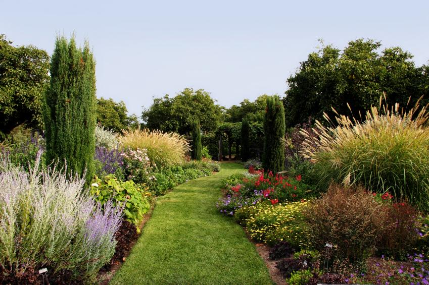 Backyard landscape design pictures slideshow for Ornamental grass bed design