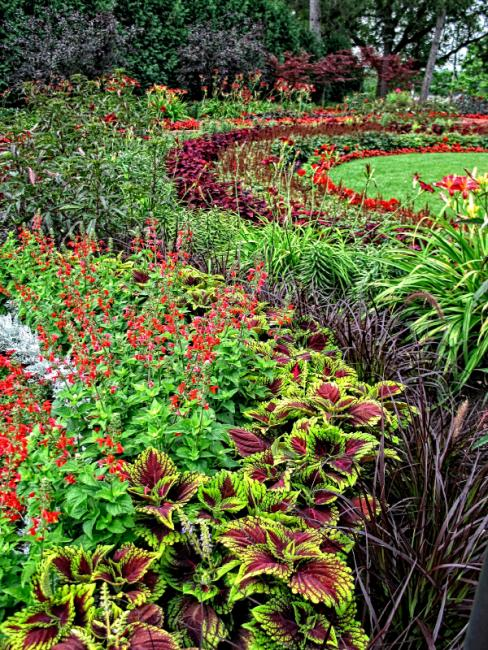 Ornamental grass landscape ideas slideshow for Grass plants for flower beds