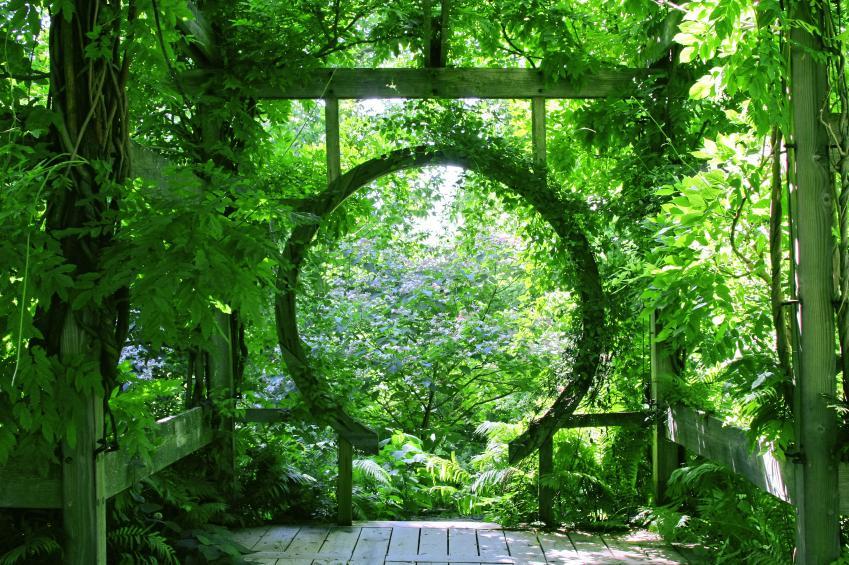 quirky round arbor amid lush foliage