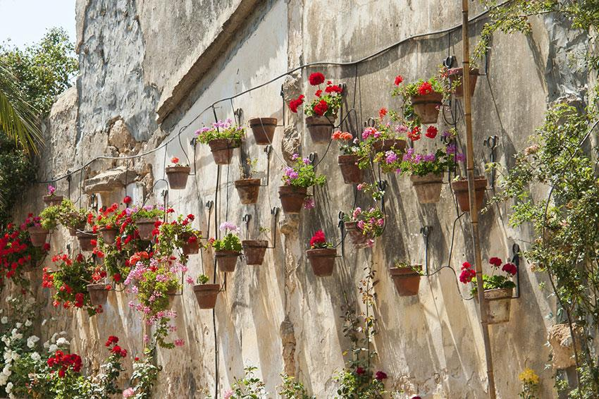 ceramic planters on old wall