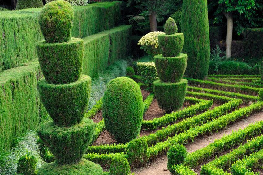 Unusual landscape design ideas slideshow for Topiary garden designs