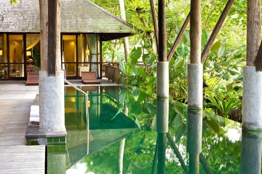 modern pool in tropical setting