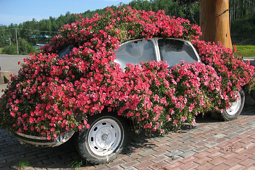 Volkswagen planter