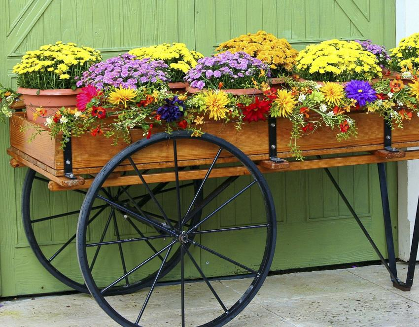 Cart of fall flowers