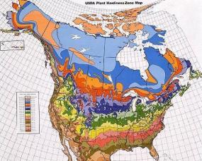 USDA Hardiness Zones