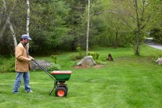 Fertilize the Lawn