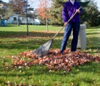 Fall garden tasks - Fall gardening tasks ...