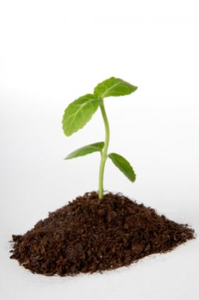 Facts about soil lovetoknow for All about soil facts