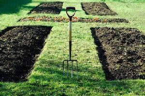Vegetable garden plans and layouts lovetoknow for Vegetable plot ideas