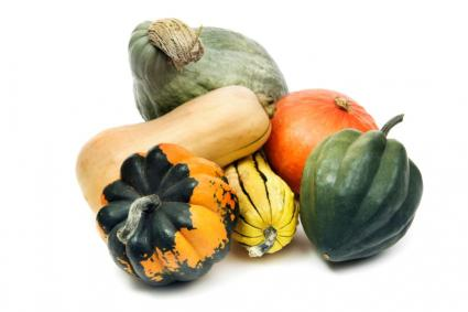Winter Squash Identification