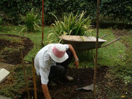 person planting a garden