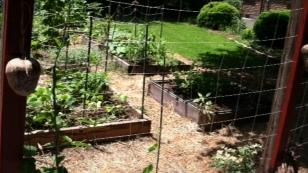 net trellis for raised beds