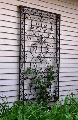 flat or wall trellis - Trellis Design Ideas