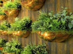 Metal wall planters