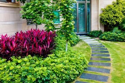 Landscape ideas that reduce grass for Plantes exterieur sans entretien