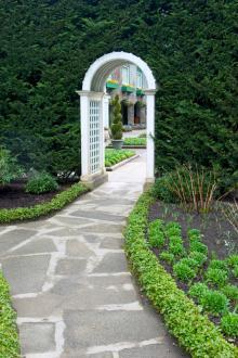 Backyard Gardening Design