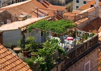 Rooftop Garden roof garden design ideas
