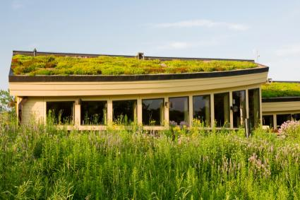 greenroof architecture