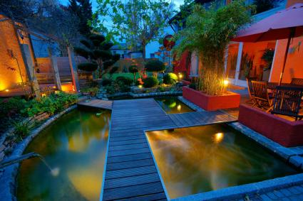 aquatic garden at dusk
