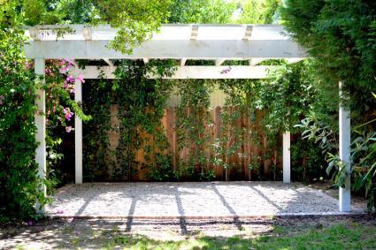 backyard perogla