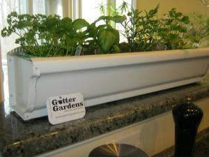 herb rain gutter garden