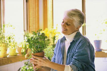 Woman holding a potted plant