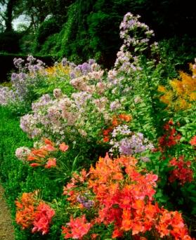Herbaceous border, Fernhill Gardens