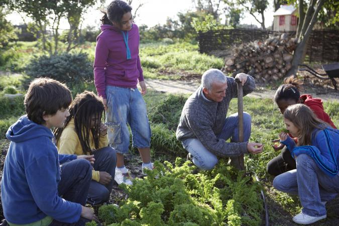 Teacher and children in a vegetable garden