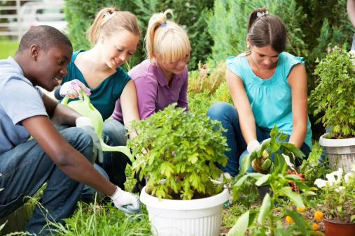 Teenage friends gardening