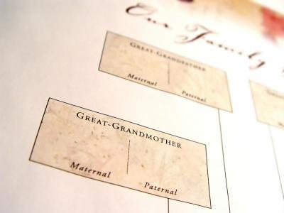 free blank family tree template. Blank Family Tree