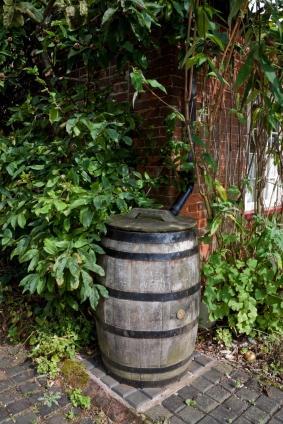 Amazing Rain Barrel In Garden