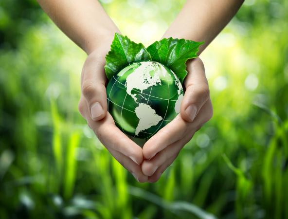 hands holding green earth