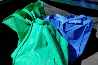 Reusable bags in the trunk of car