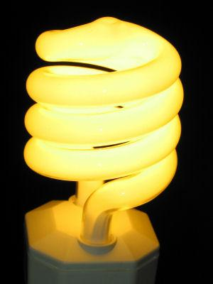 Energy Star Light Bulb