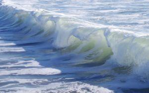 Waves can be harnessed to produce energy