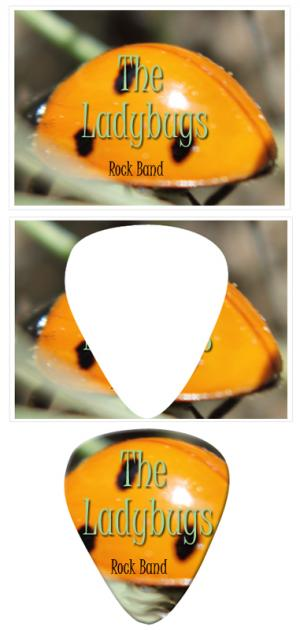 make your own guitar picks from photos
