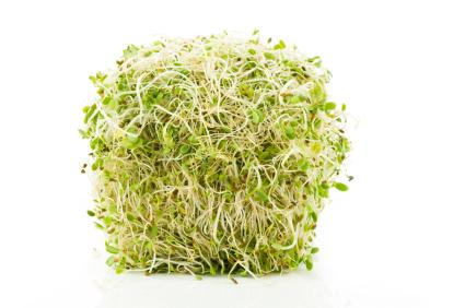 Sprouts provide numerous health benefits.