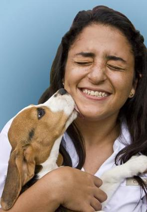 Herbs to Treat Dogs