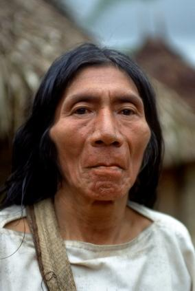 native american remedies