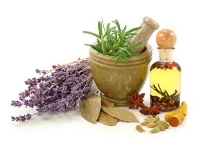 Herbs can keep bugs at bay