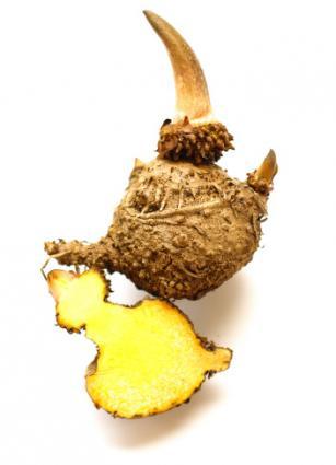 Uses Of Konjac Root