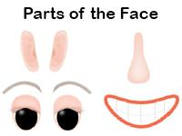 parts of the face Spanish worksheet