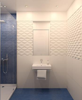 Bathroom Designs For The Elderly And Handicapped