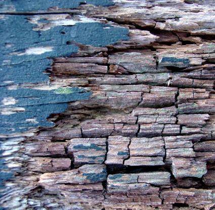 wood disintegrating