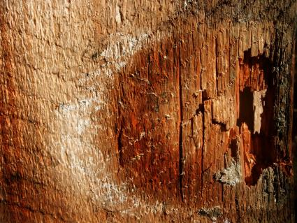 reddish wood falling apart