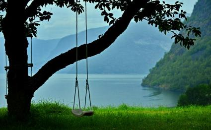 Image result for benefits tree swing
