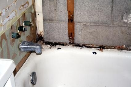 How To Caulk A Bathroom Tips For Caulking Bathtubs  Lovetoknow