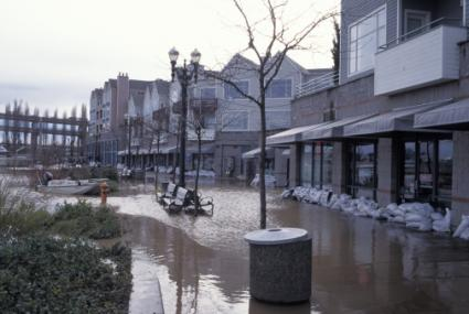 Flooded City Street